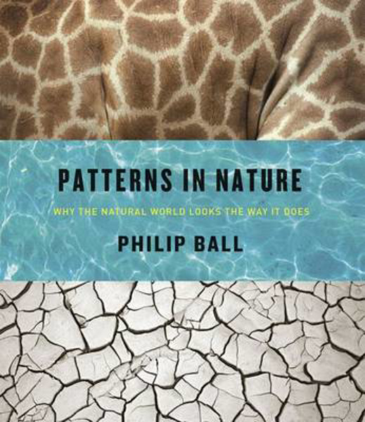Picture of Patterns in Nature: Why the Natural World Looks the Way it Does