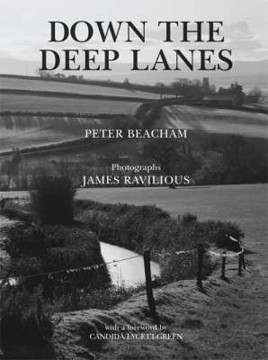 Picture of Down the Deep Lanes