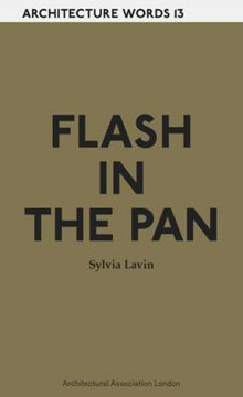 Picture of Architecture Words 13 - Flash in the Pan