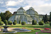 Picture of The Conservatory: A Celebration of Architecture, Nature, and Light