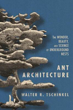 Picture of Ant Architecture: The Wonder, Beauty, and Science of Underground Nests
